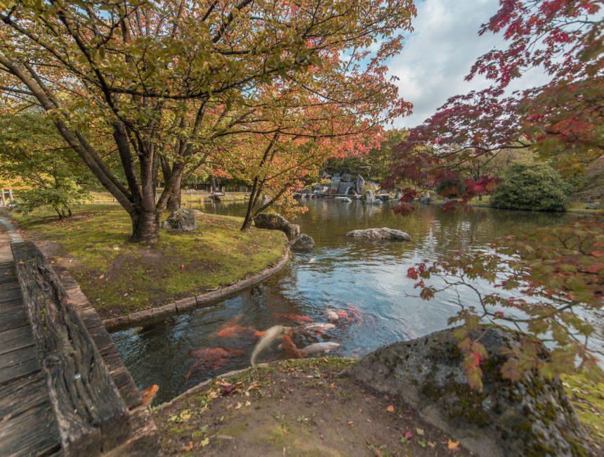 Hasselt Japanse Tuin