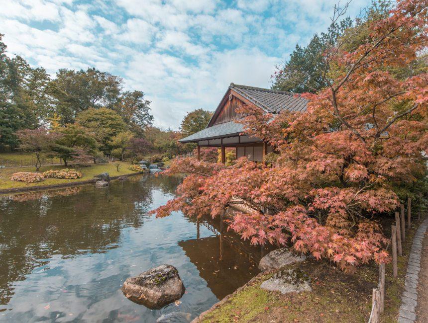Japanse Tuin Belgie