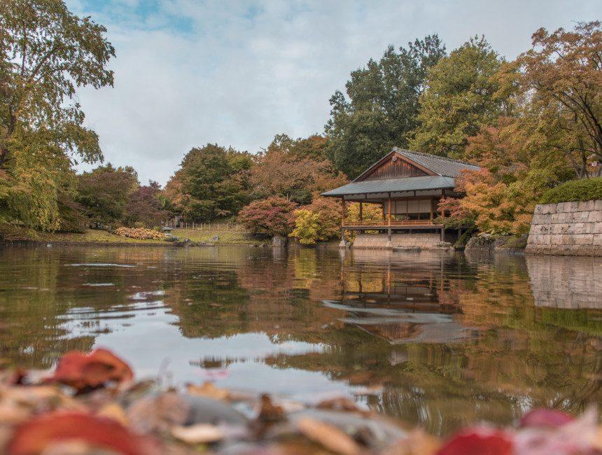 Japanse Tuin Hasselt herfst
