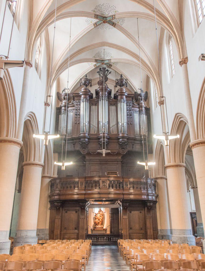 Sint-Quintinuskathedraal bezienswaardigheden Hasselt
