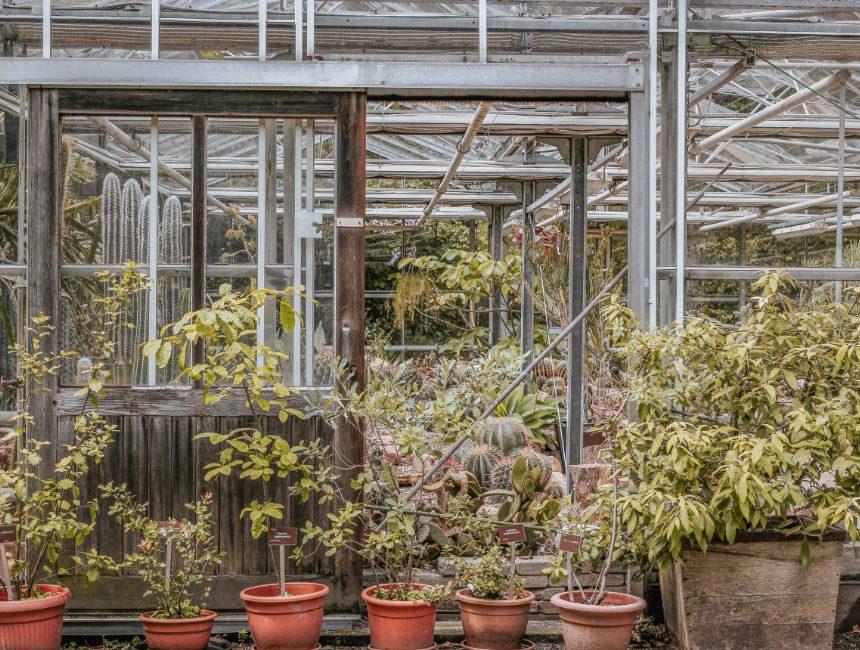 Trompenburg tuinen