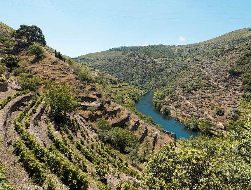 douro vallei portugal