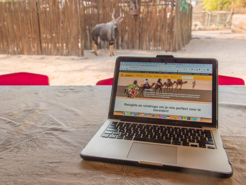 geld verdienen met bloggen zuid afrika