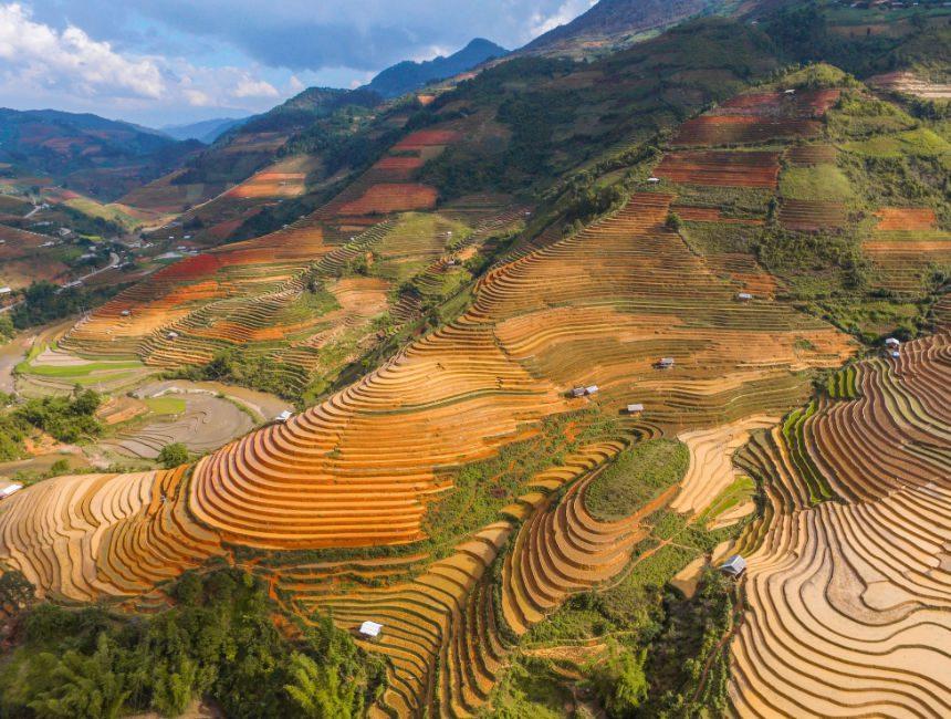Fotos Vietnam dating sites mandoline oranje dating