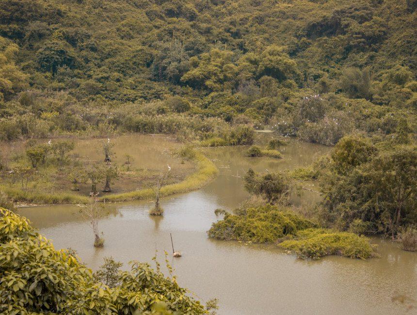 thung nham bird park bezienswaardigheden ninh binh