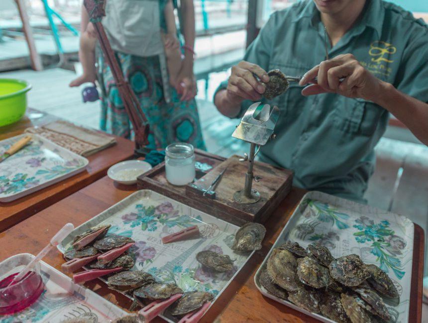 oesterkwekerij halong bay tour