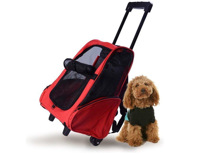 Beste hondentrolley tot 15 kg