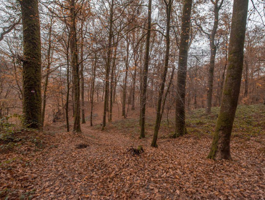 Graf van de reus bewegwijzerde wandelroute Ardennen