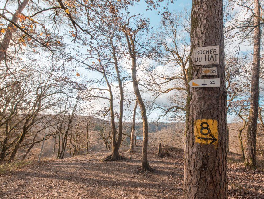 Rocher du Hat wandelroutes Ardennen