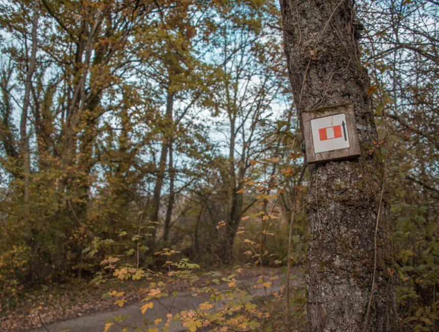 wandeltocht Ardennen Fondry des Chiens