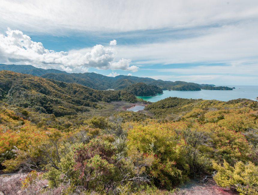 abel tasman national park dingen om te doen in Nieuw-Zeeland
