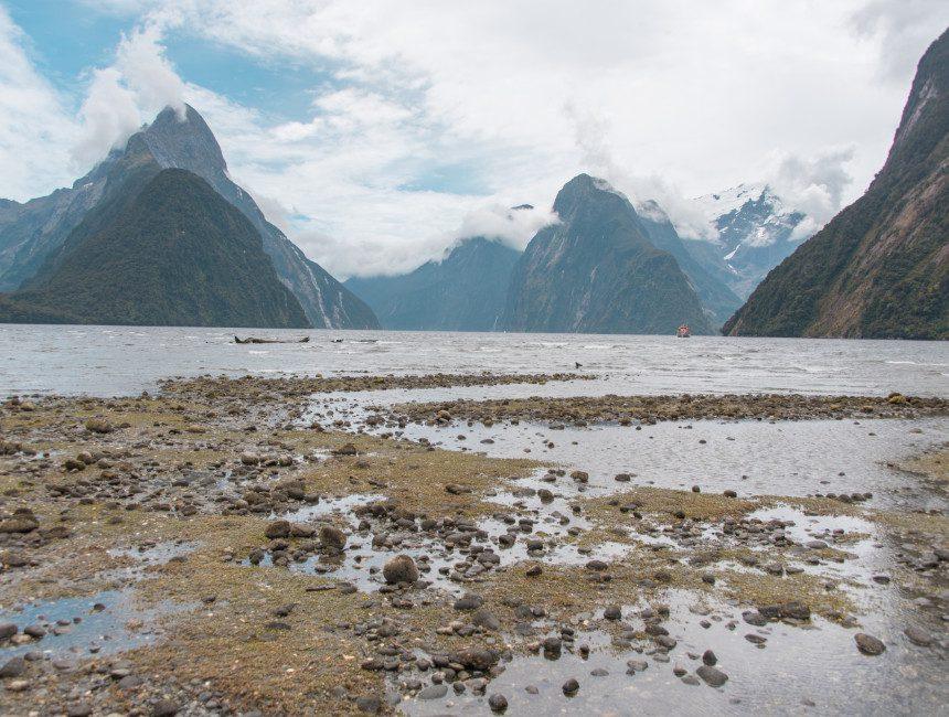 Dingen om te doen in Nieuw-Zeeland Milford Sound