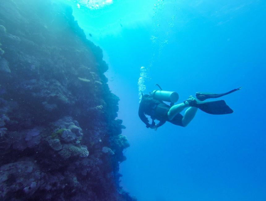 great barrier reef australie dingen om te doen duiken