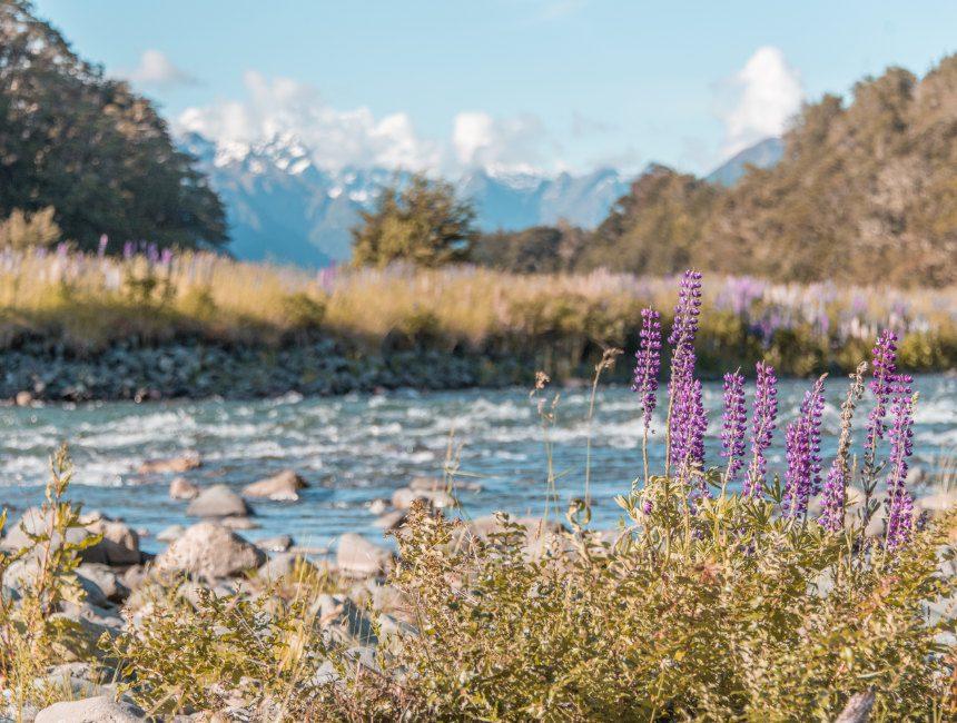 Milford Sound Nieuw-Zeeland bezienswaardigheden