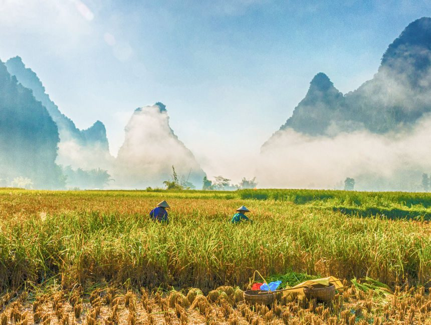 individuele rondreis Vietnam