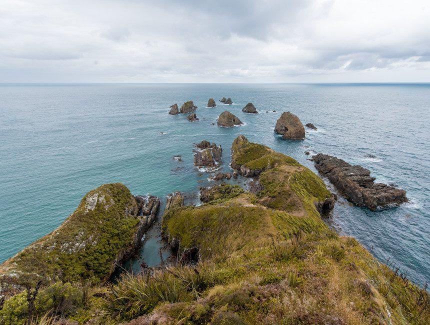 Nugget Point Nieuw-Zeeland