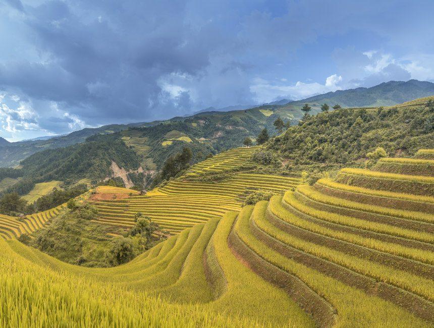 rondreis Vietnam zelf regelen