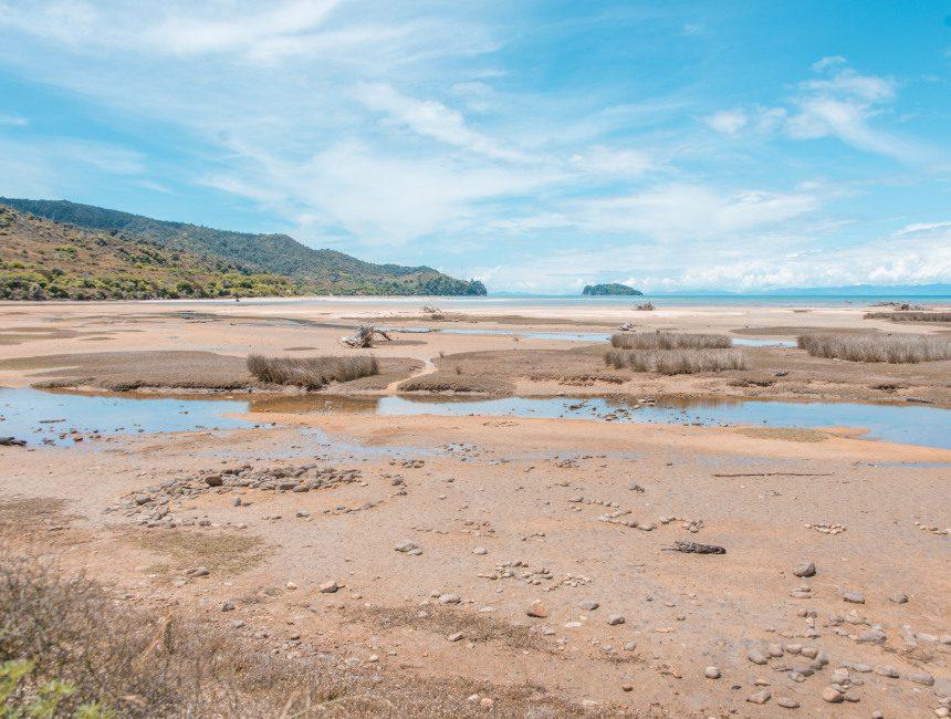 strand Abel Tasman National Park