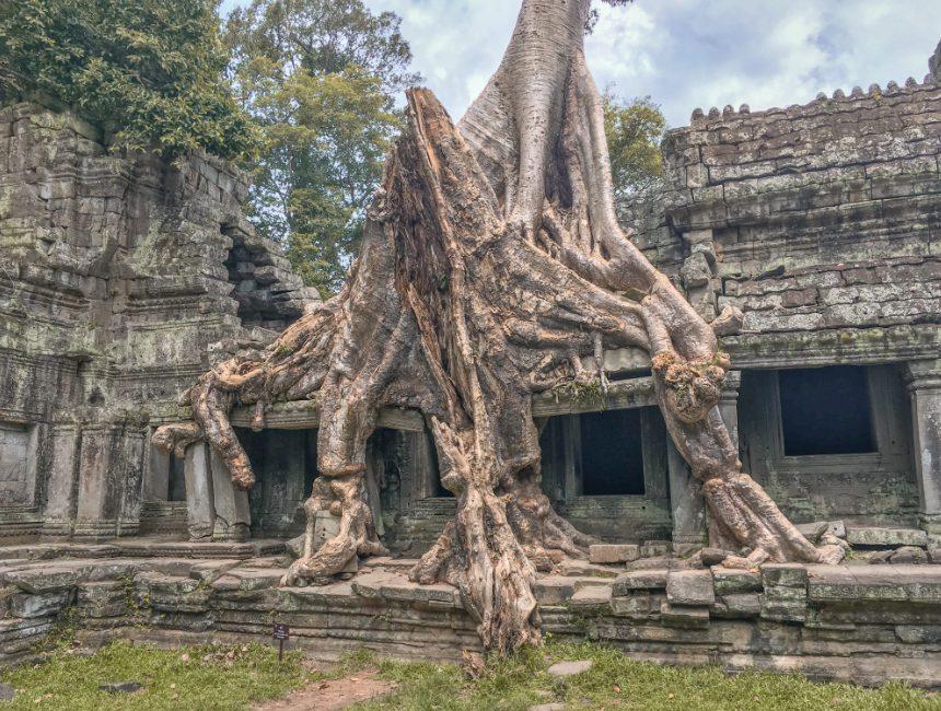 angkor wat bezoeken Cambodja