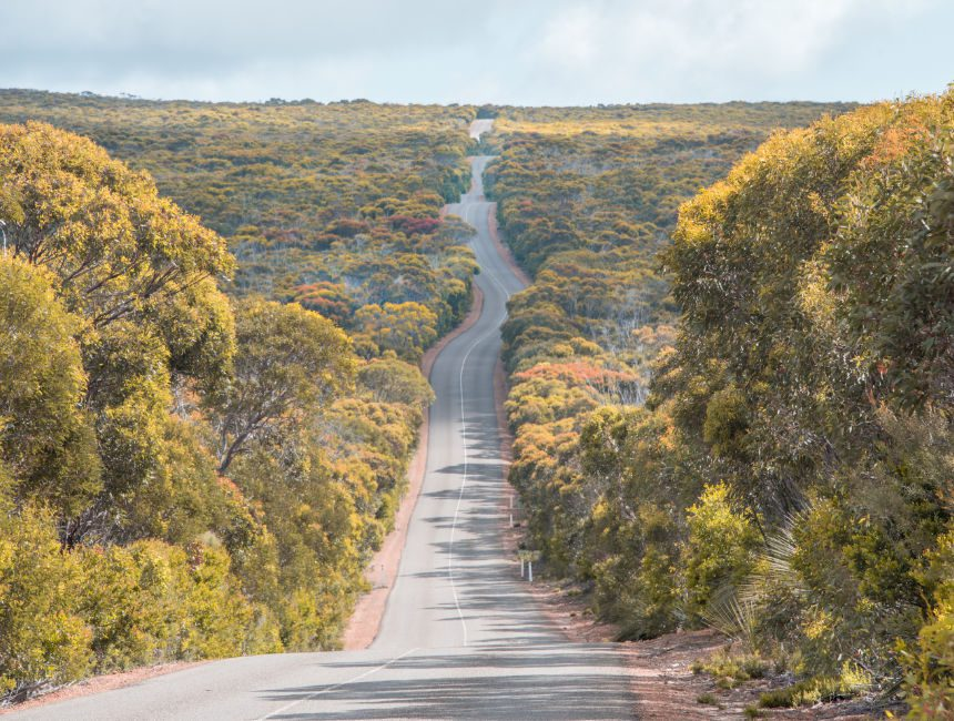 Kangaroo Island rondreis Australië