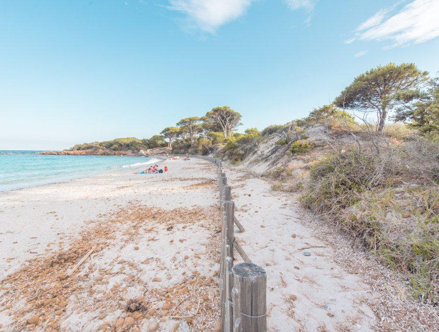 Palombaggia strand Corsica