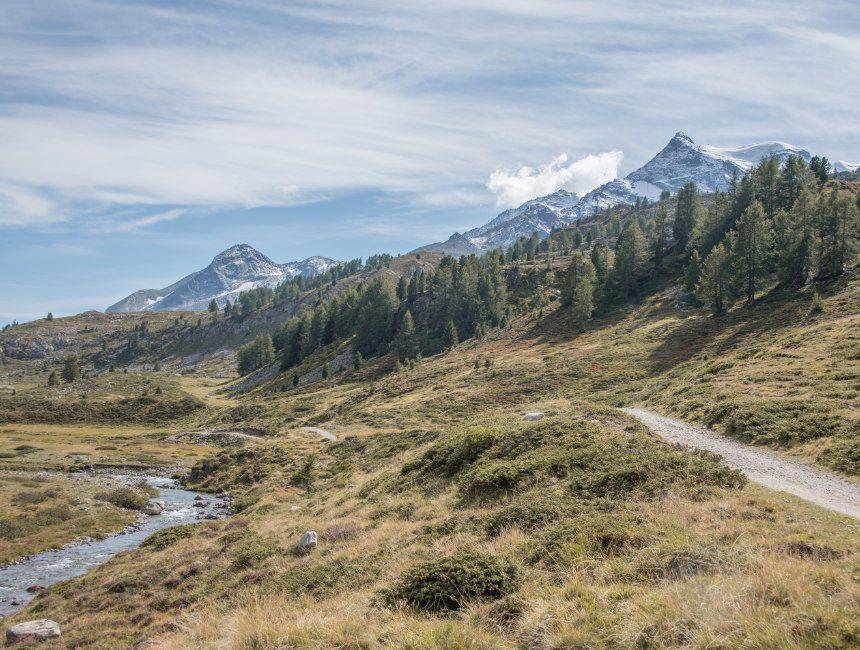 hike Diavolezza Alp Grüm