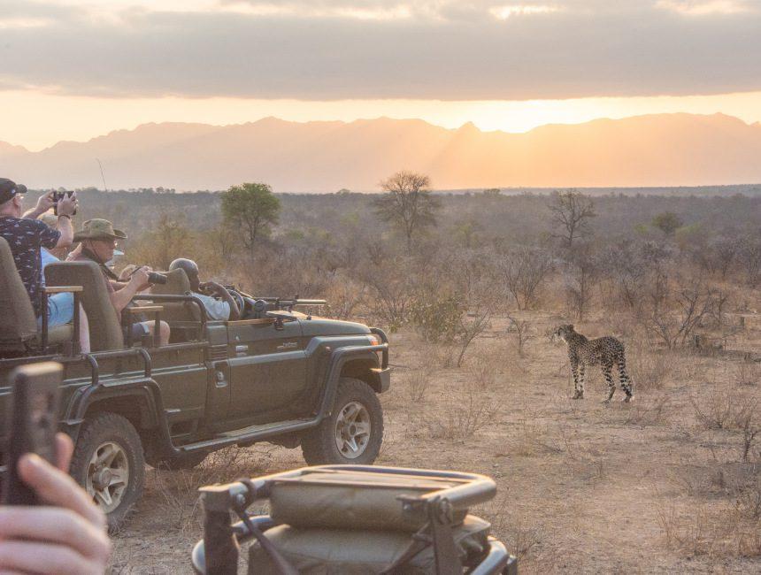 Safari Krugerpark lodges
