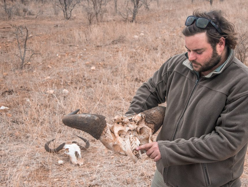 nDzuti Safari Ranger
