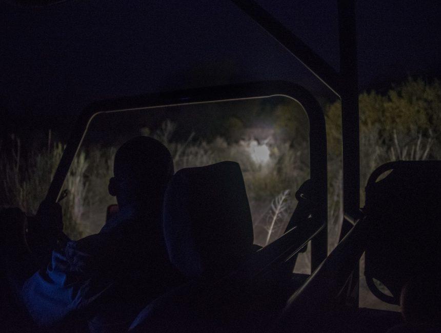 nachtsafari jock lodge