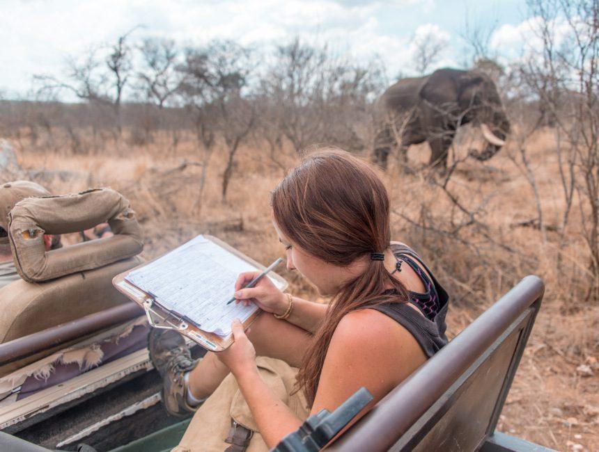 vrijwilligerswerk buitenland data bedreigde diersoorten olifant