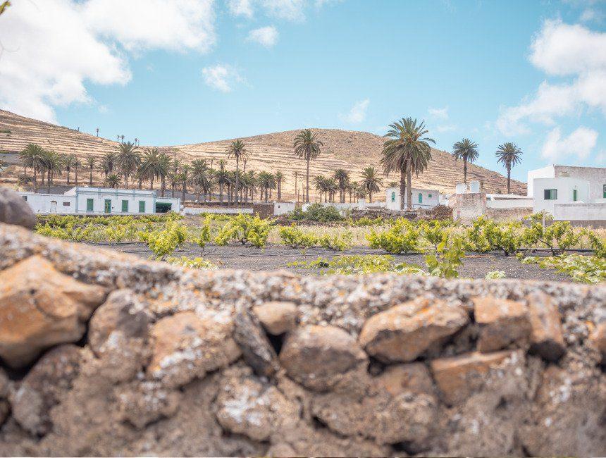 hoogtepunten Lanzarote Haria