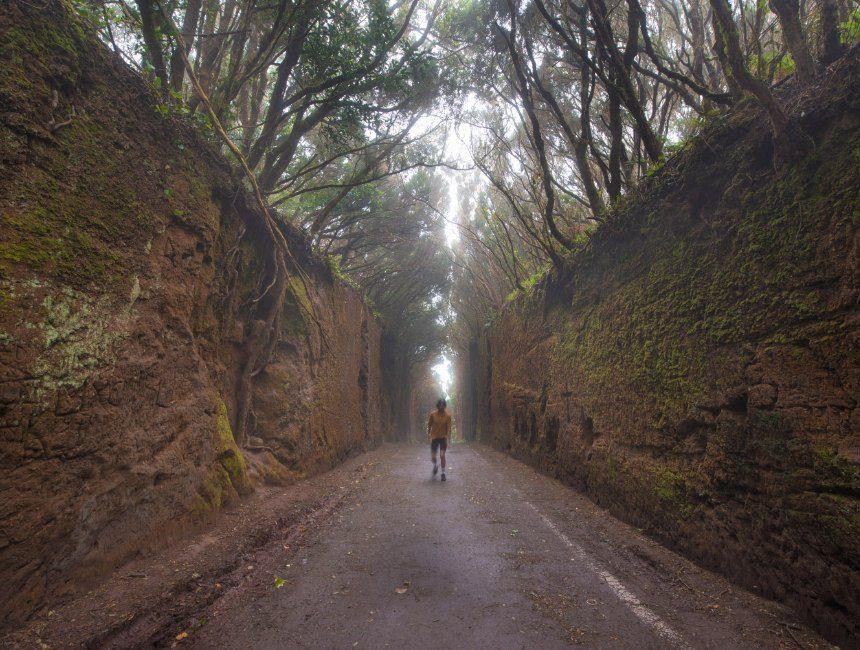 Camino Viejo Mirador Pico del Ingles