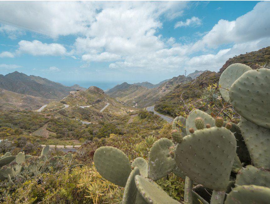 roadtrip Tenerife Anagu Rural Park